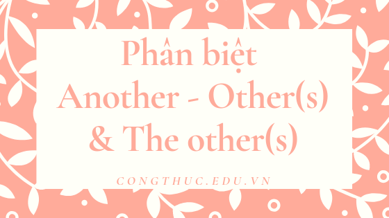 Phân biệt Another – Other(s) – The other(s)